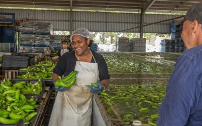 GROWCOM:  Agriculture Labour Needs Survey (Closing Friday 3 Apr 2020)