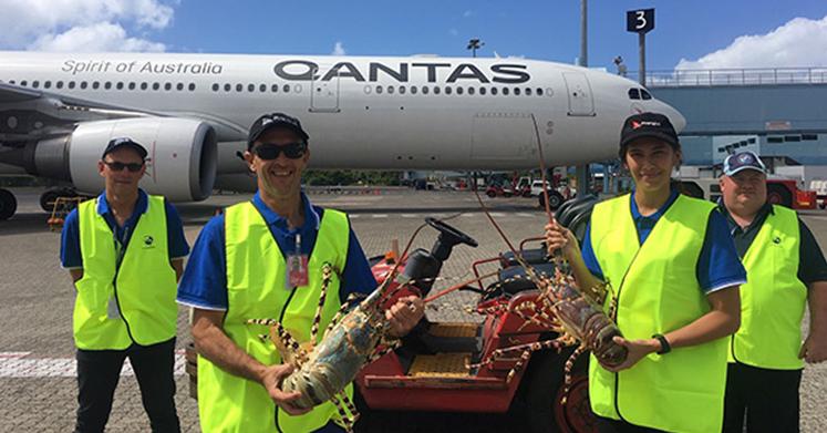 International Freight Assistance Mechanism (IFAM) Update